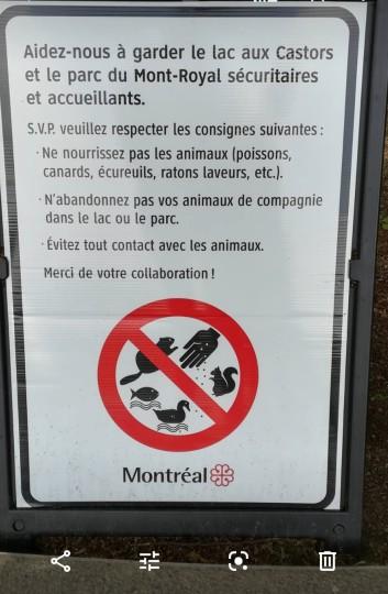 Montréal-parc-francophonie